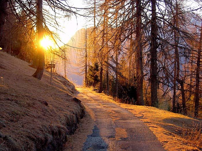 La Strada del Genio a Verna