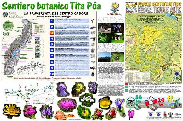 pannello informativo a Lozzo di Cadore, località Pianizole: il sentiero botanico Tita Poa