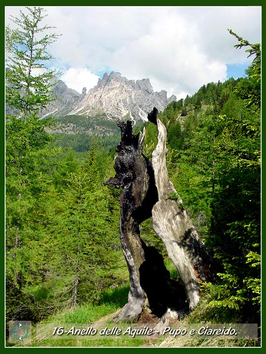 foto: il Pupo di S. Lorenzo ed il Ciarìdo dall'Anello delle Aquile a Lozzo di Cadore