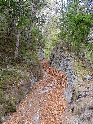 La strada di Quoilo (Strada della Montagna) nei pressi della Ciòpa del Laris