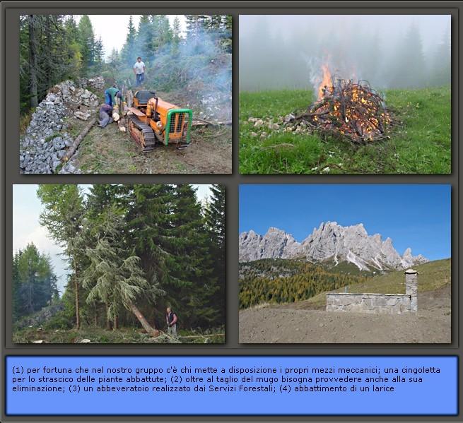 CAI e Parco della memoria a Pian dei Buoi: alcune foto delle attività intraprese (2)