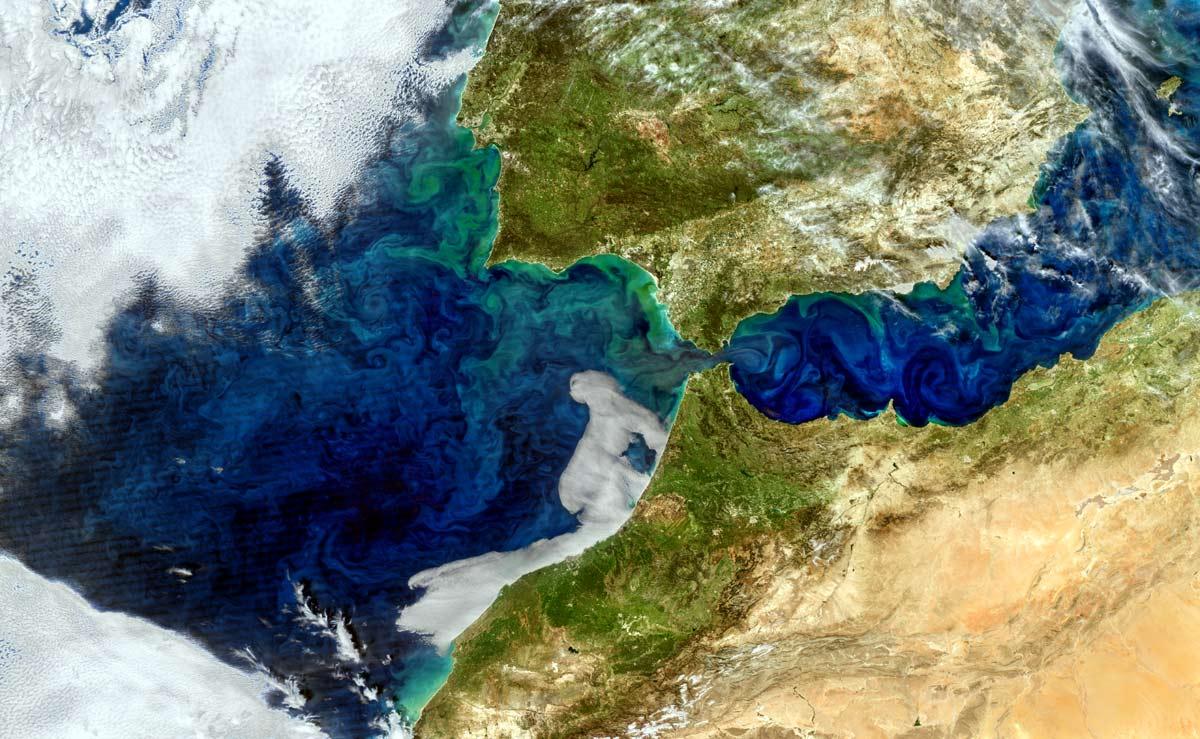 """Stretto di Gibilterra: """"fioritura"""" di fitoplancton"""