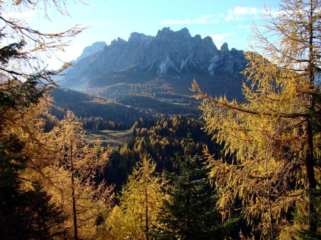 Scorcio autunnale verso il M. Ciarìdo dal Col dei Laris (Col Vidal)