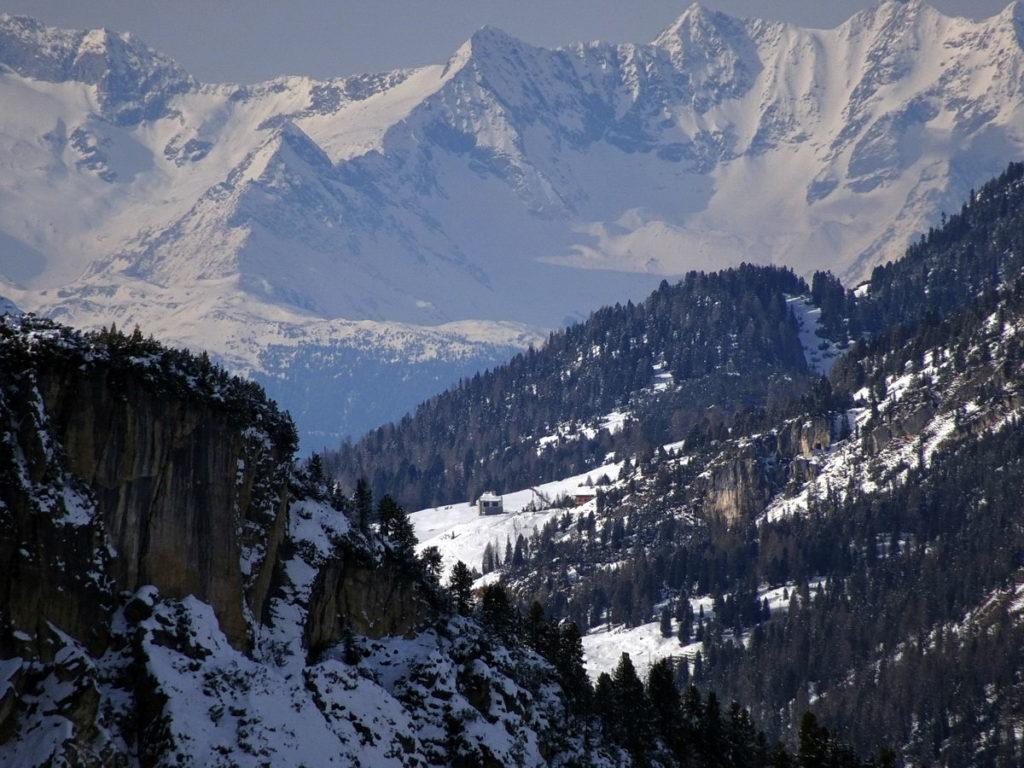 Rifugio e Forte di Vallandro dal rif. Col de Varda; sullo sfondo, al centro, il Monte Corno/V-Hornspitze, seguito sulla destra dalle altre cime del massiccio: IV-Hornspitze, III-Hornspitze