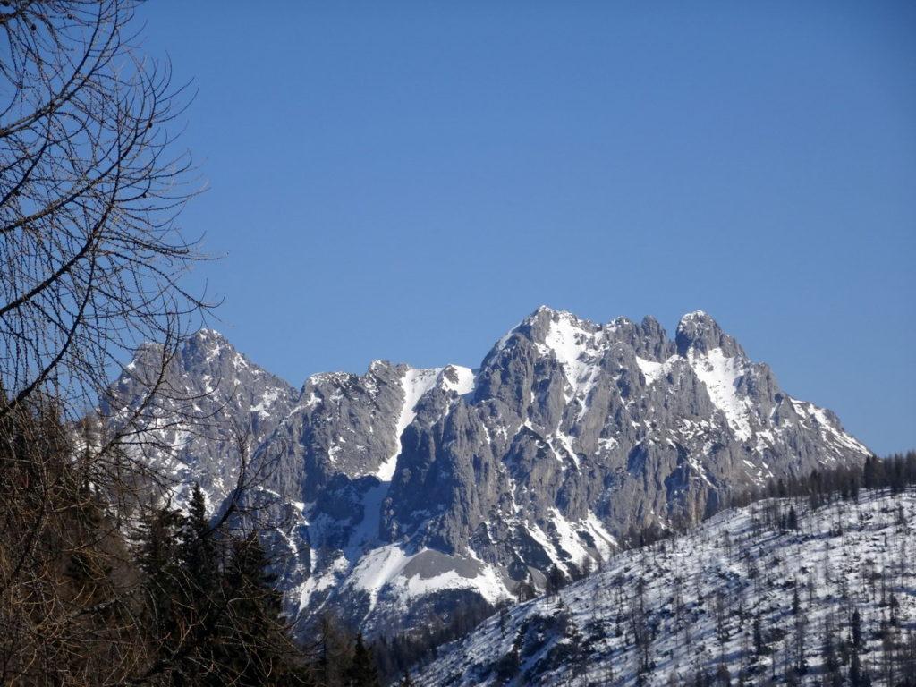 Cresta di Enghe e Creta di Mimoias dalla strada silvopastorale per casera Doana