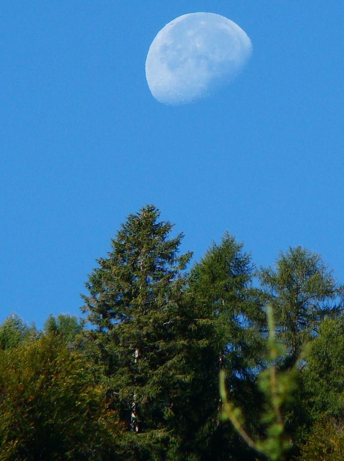 Luna sospesa…