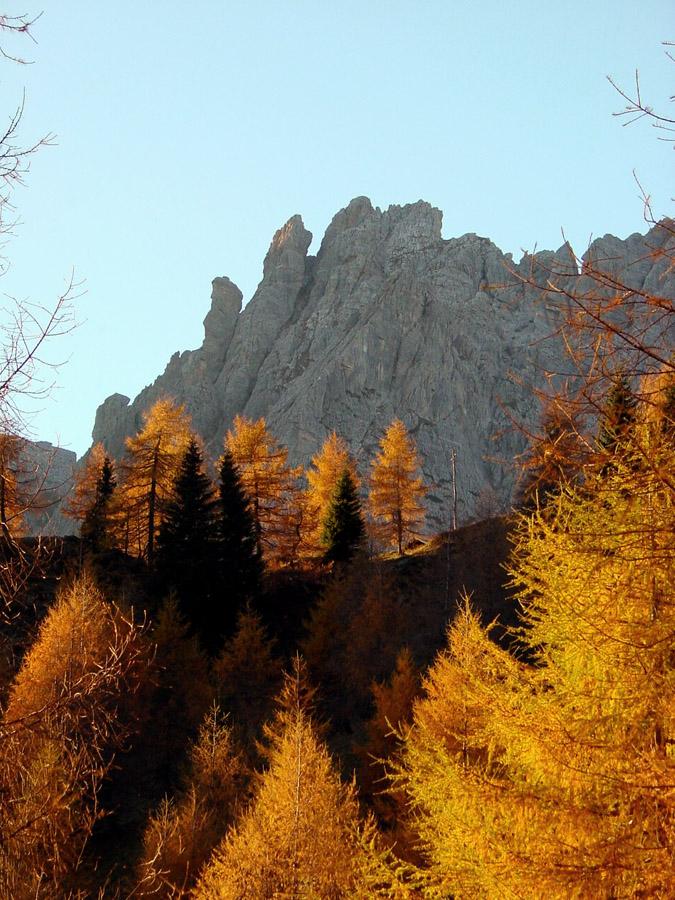Da Cianpo de Cros verso Soracrepa con lo sfondo della cima SO del Ciarìdo