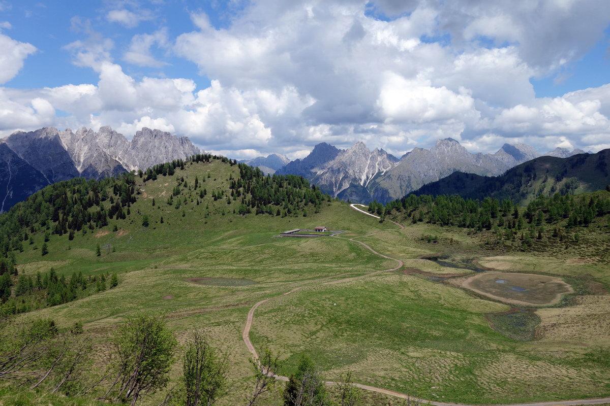 Malga Festons dal M. Festons; oltre la malga il M. Malins e sullo sfondo i monti dal Creton di Clap Piccolo al M. Canale