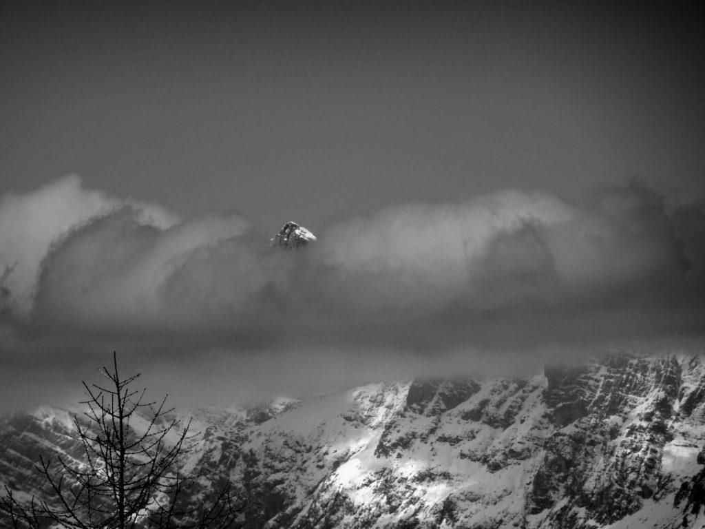 Il Cimon del Froppa spunta tra le nuvole; dalla strada del Col Rementera