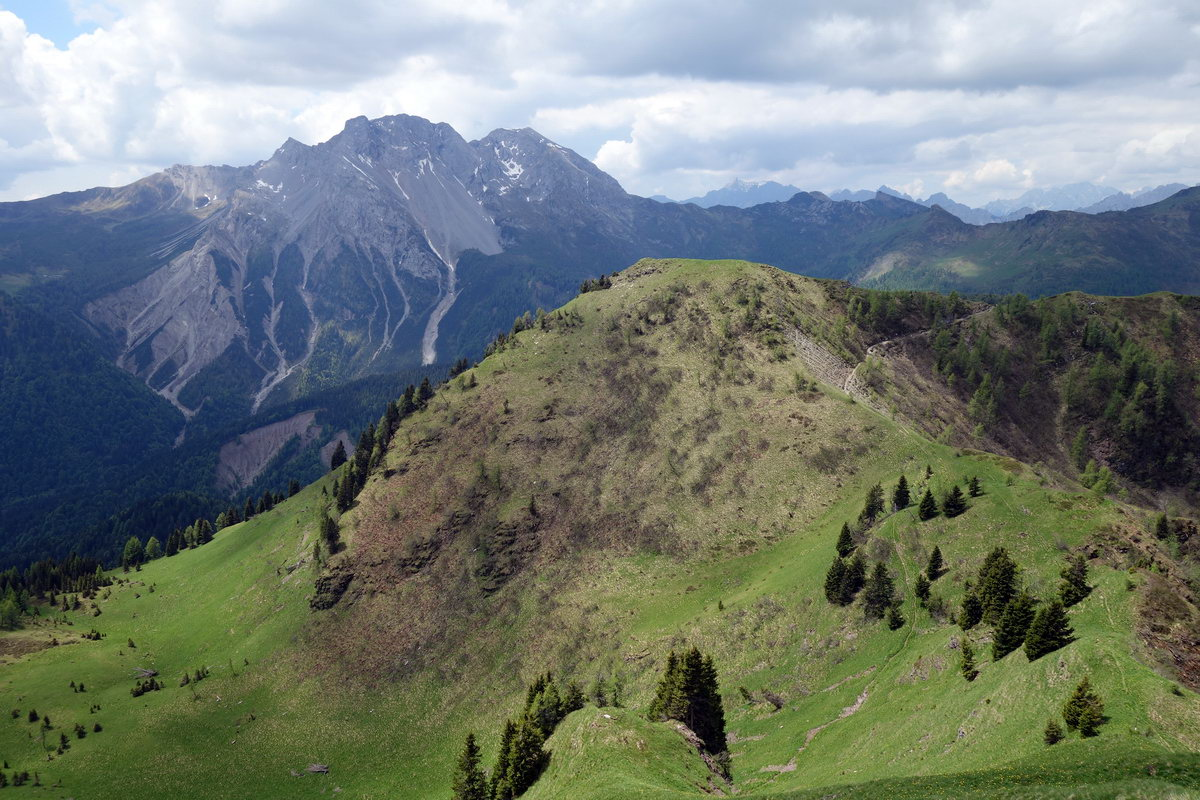La cupola del M. Palon (Palone) dal M. Oberkofel; sullo sfondo Bivera e Clapsavon